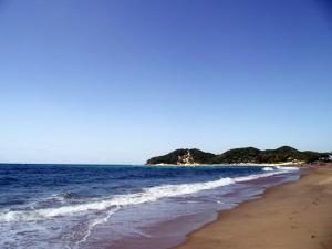 Glorious warm seas